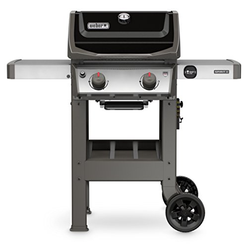 Weber 44010001 Spirit II E-210 2-Burner Liquid...