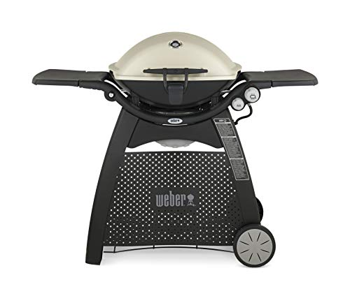 Best Gas Grills Under $500 - Weber 57060001 Q3200 Liquid Propane Grill