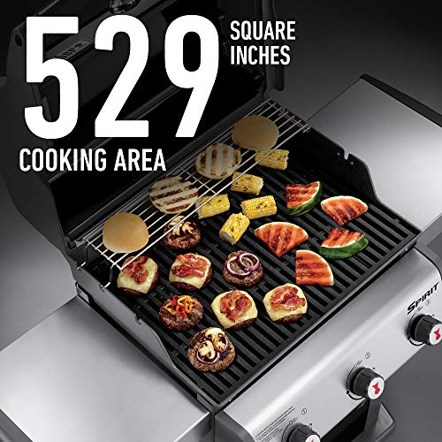 What is the Disadvantage of Weber Spirit E 310?