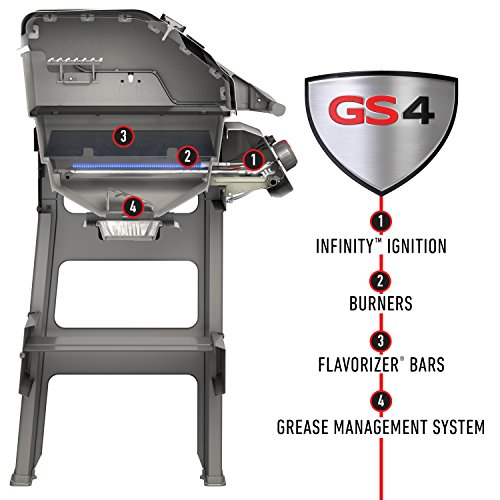 What Users are Saying About the Weber Spirit 2 E310