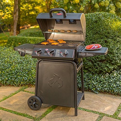Char-Griller E3001 Review