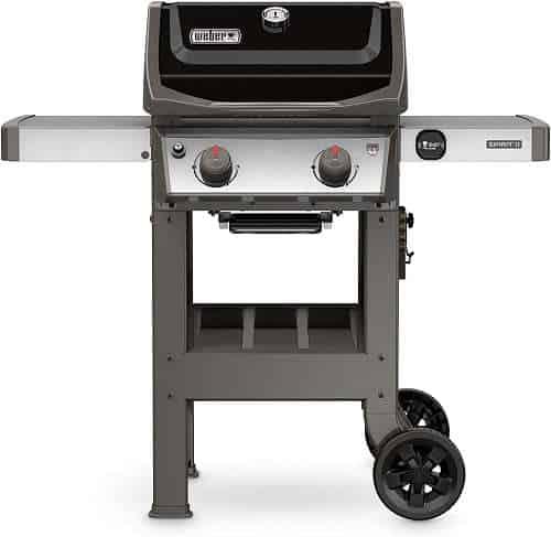Weber 44010001 2-Burner Propane Grill