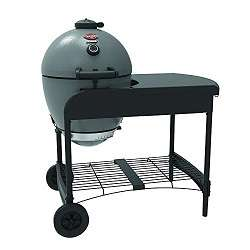 Char-Griller E6520 Charcoal Grill