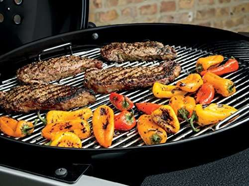 Weber 15301001 Review - Is it really user friendly?