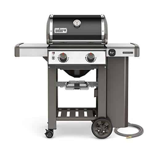 Weber 65010001 Genesis II E-210 Natural Gas Grill