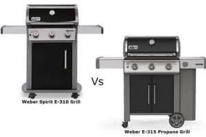 Weber 310 vs 315
