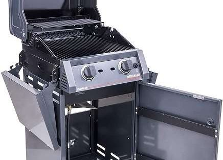 Char-Broil 463655621 Review - What Makes It Worthy?