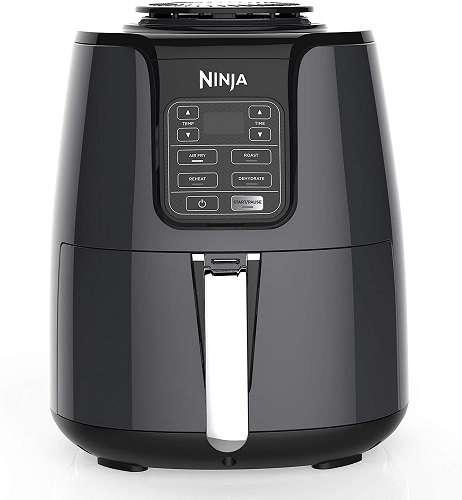 Ninja AF100
