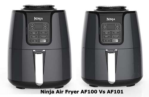 Ninja Air Fryer AF100 Vs AF101