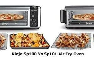 Ninja Sp100 Vs Sp101